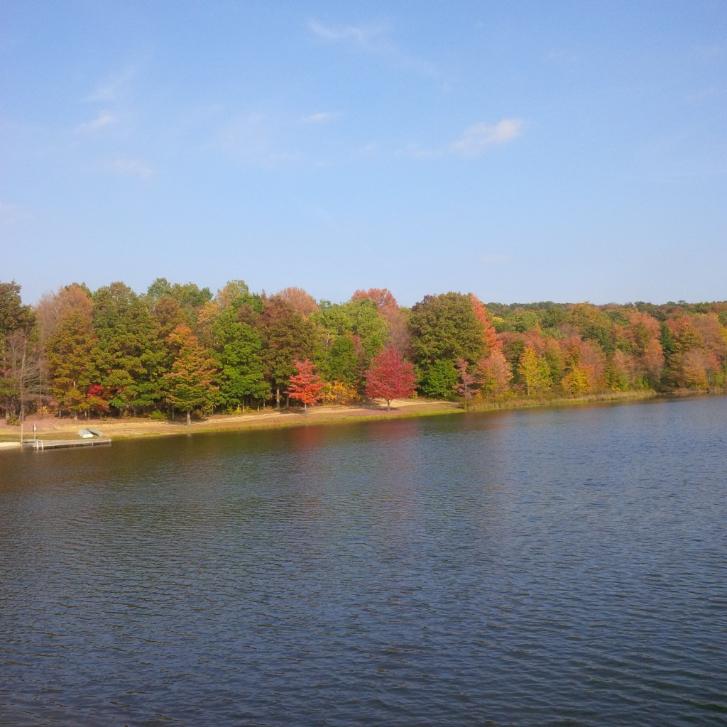 Property Tax lake