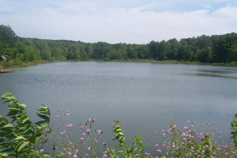 Lake 8